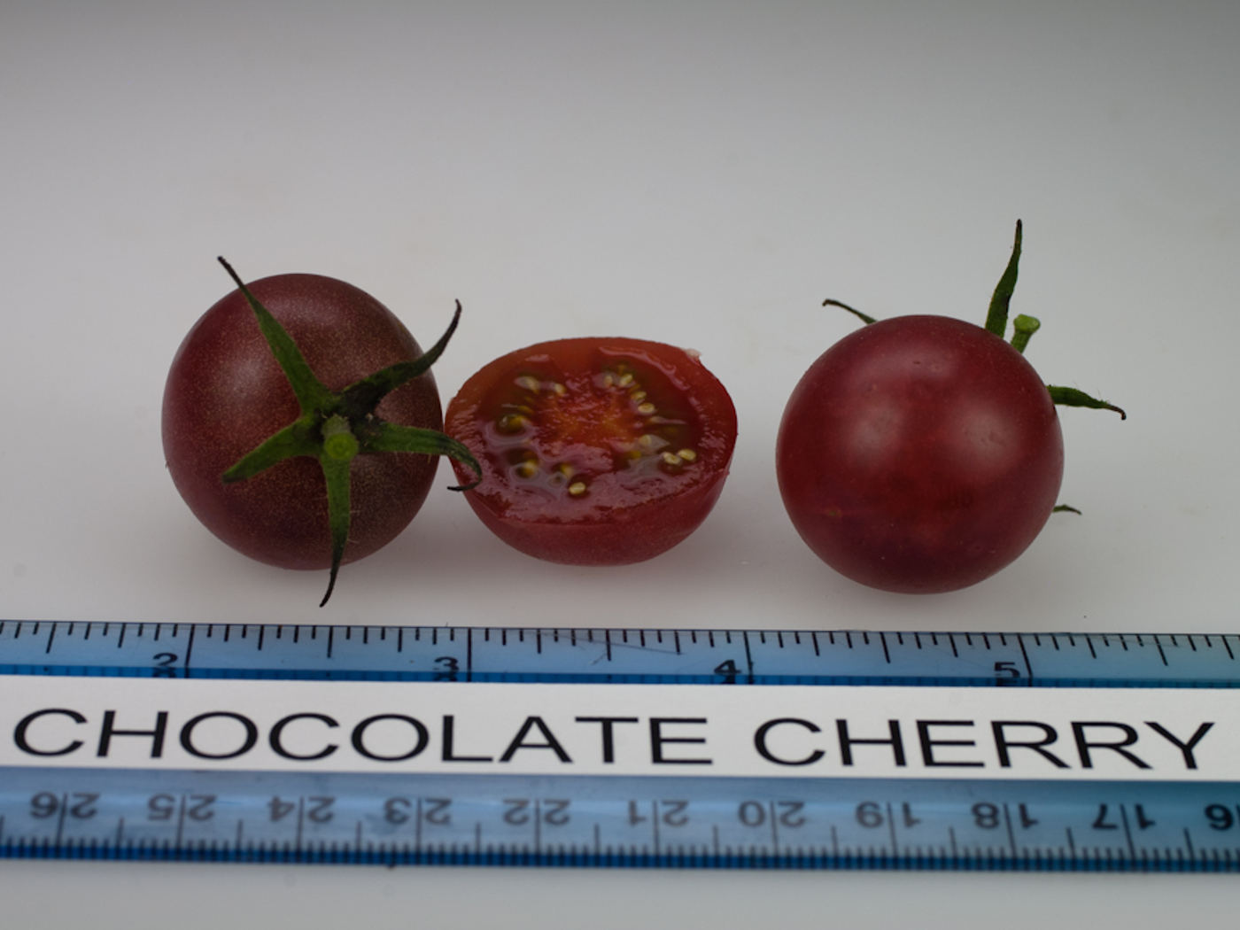 """Chocolate Cherry"" paradicsom"