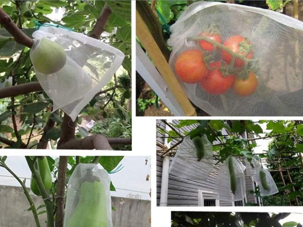 Zsinórral zárható termésvédő, növényvédő háló