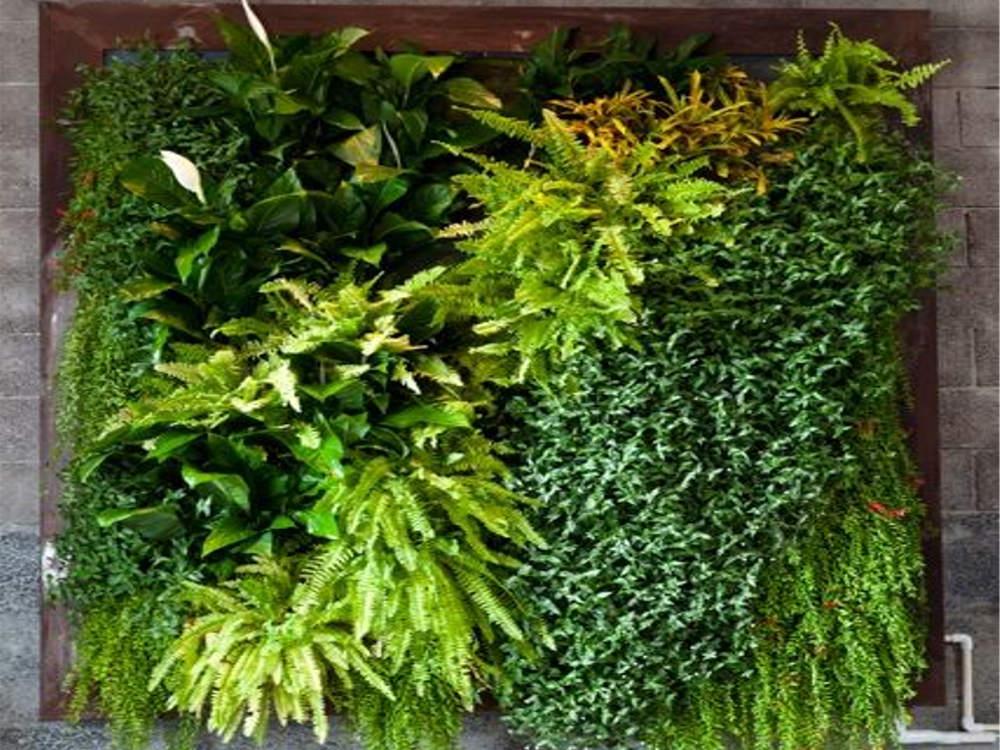 Függőleges kert, avagy zöldfal (9 zseb)
