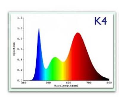 K4 spektrum