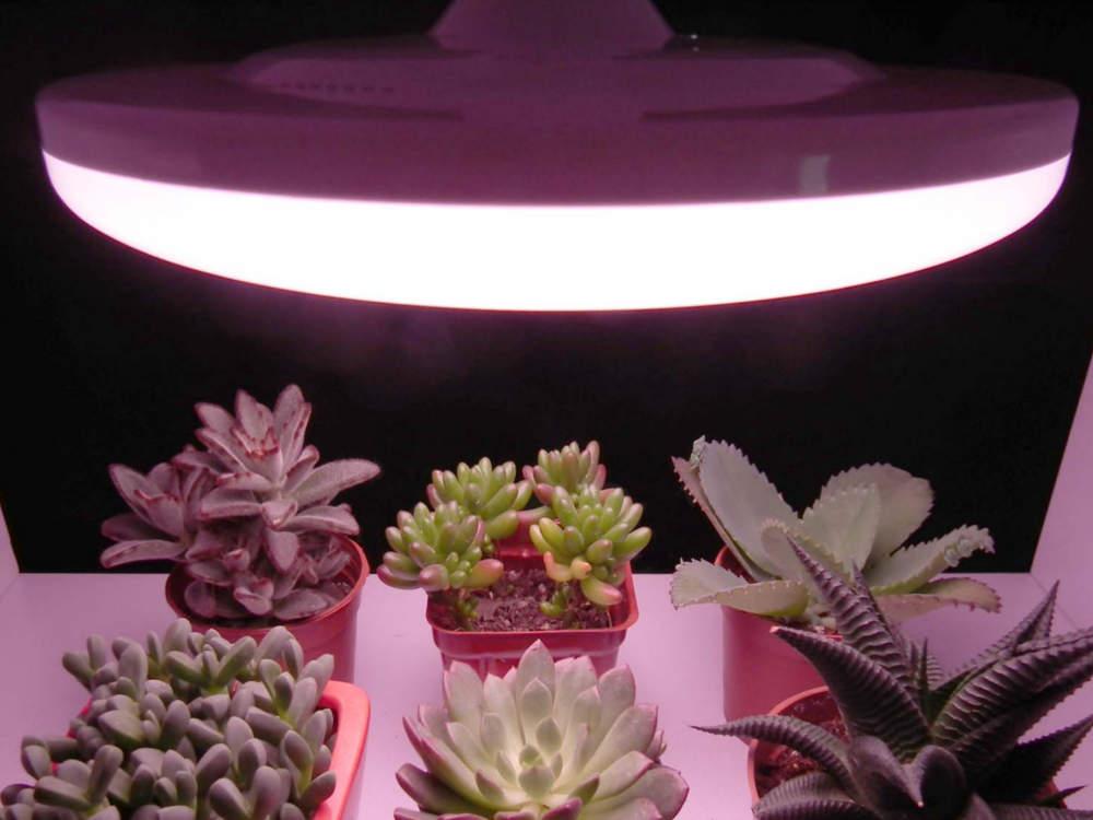 Profi LED növénynevelő izzó, E27