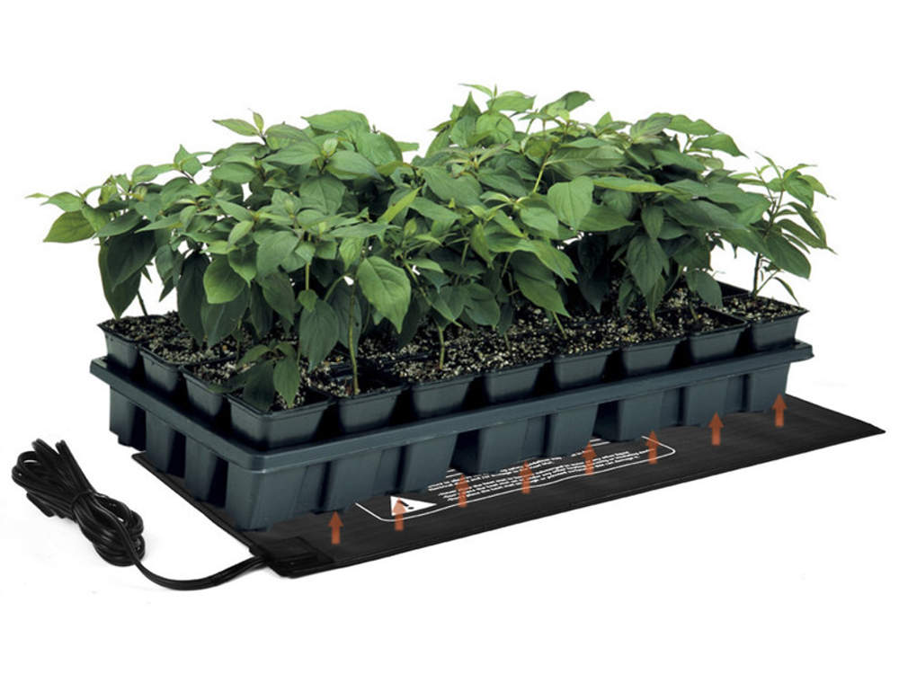 Palántázás, növénytermesztés
