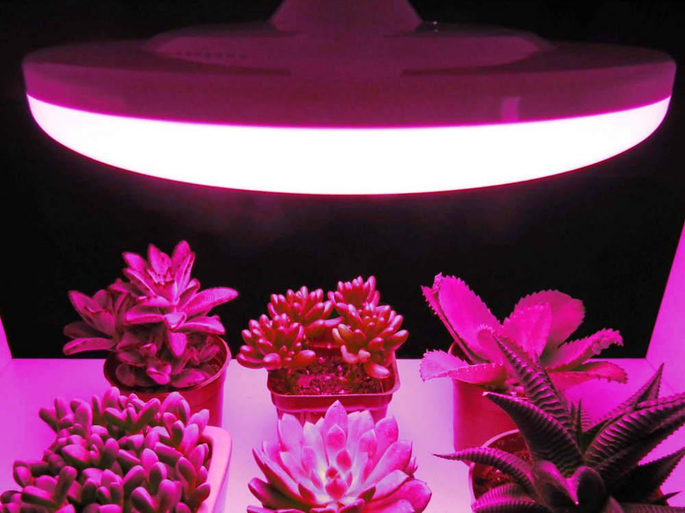 LED növény nevelő izzók & lámpák