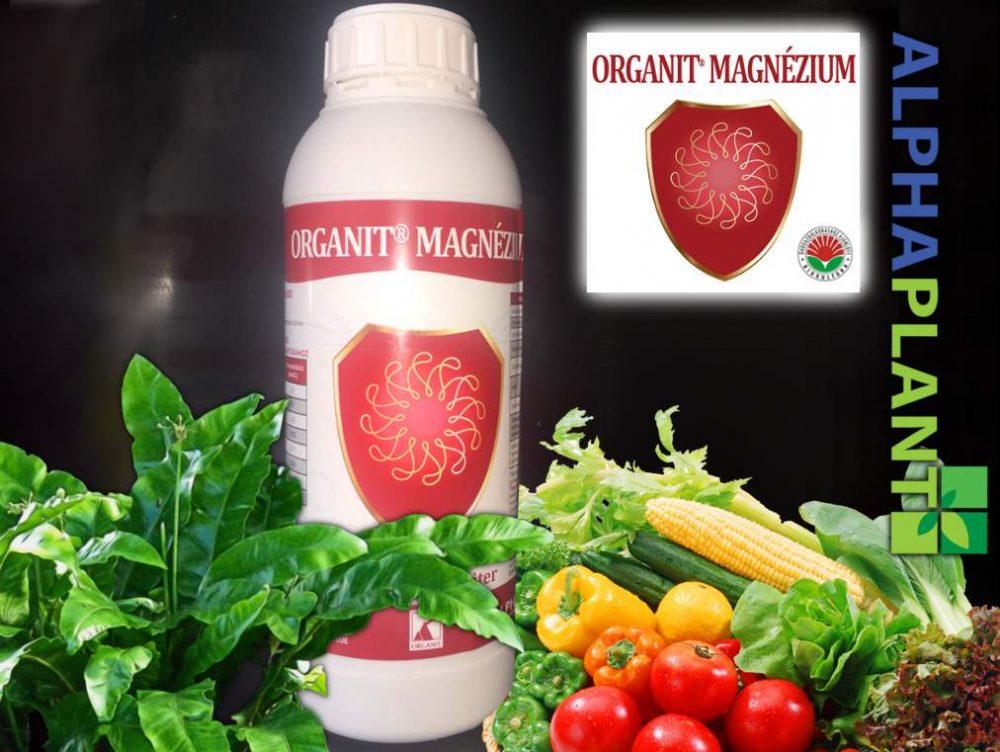 Bio műtrágya, Organit magnézium