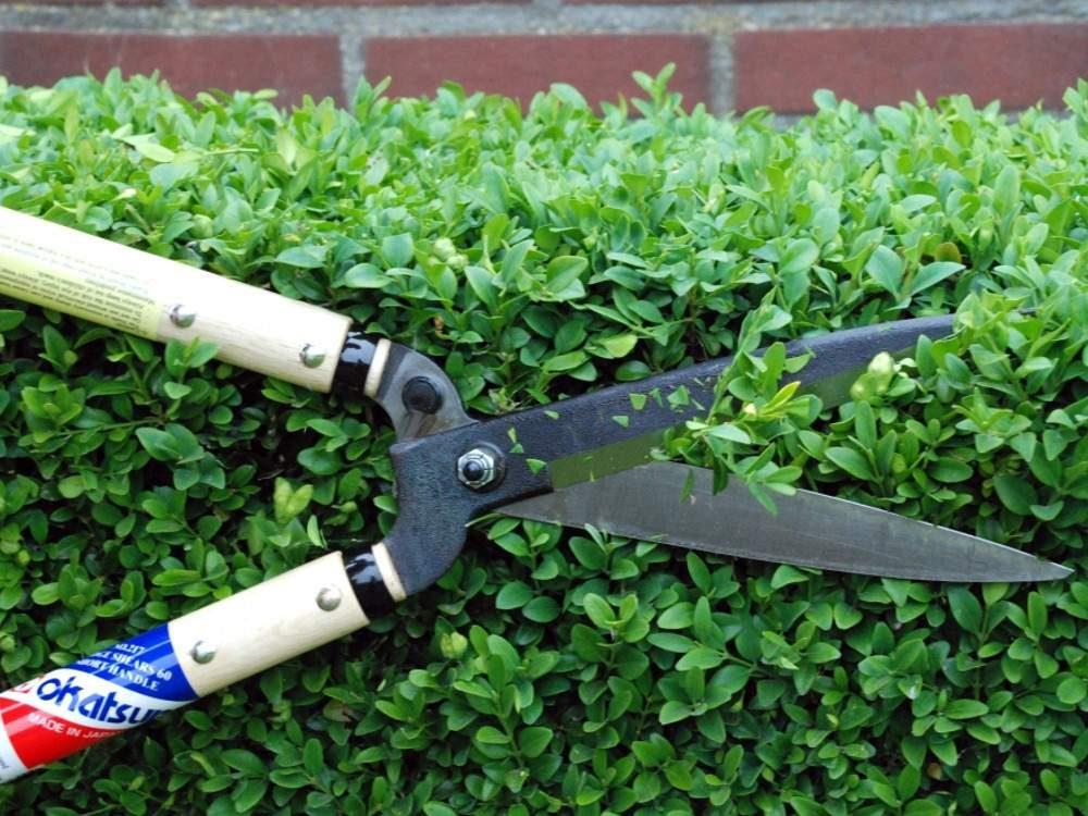 Okatsune® 217 rövid nyelű bozótvágó