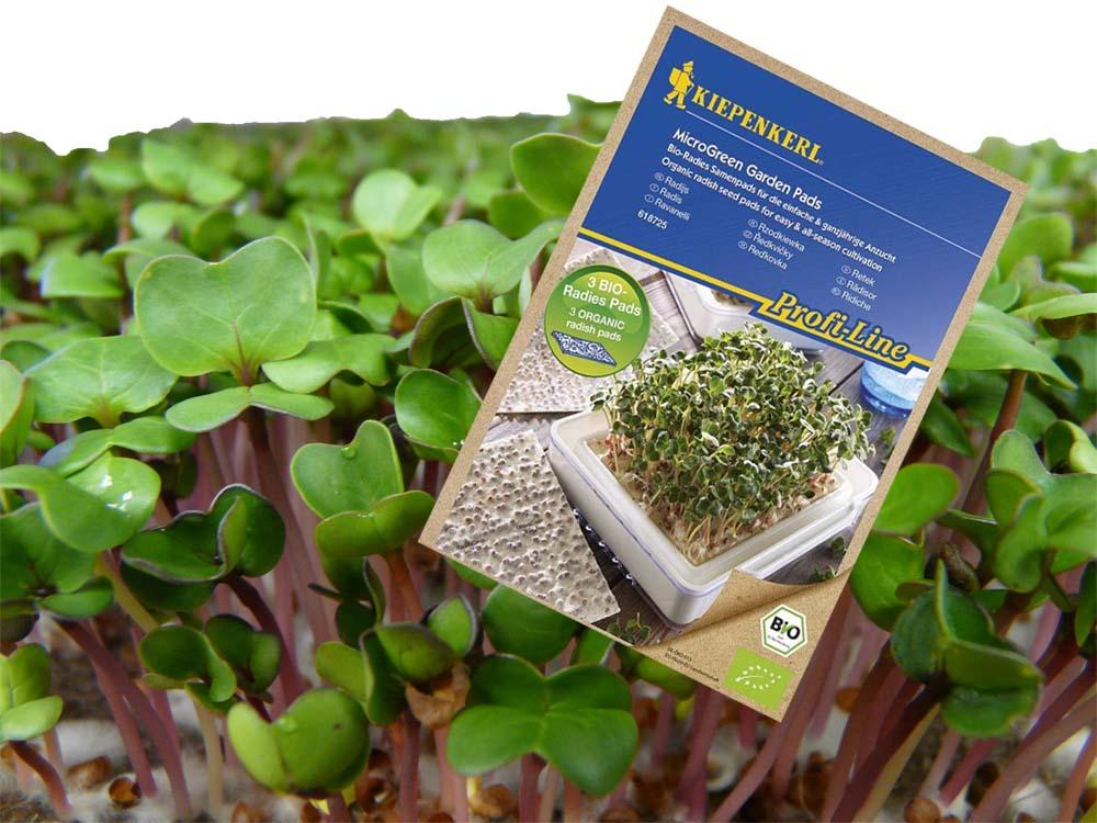 Kiepenkerl bio magpárnák mikrozöldség termesztéshez - Retek