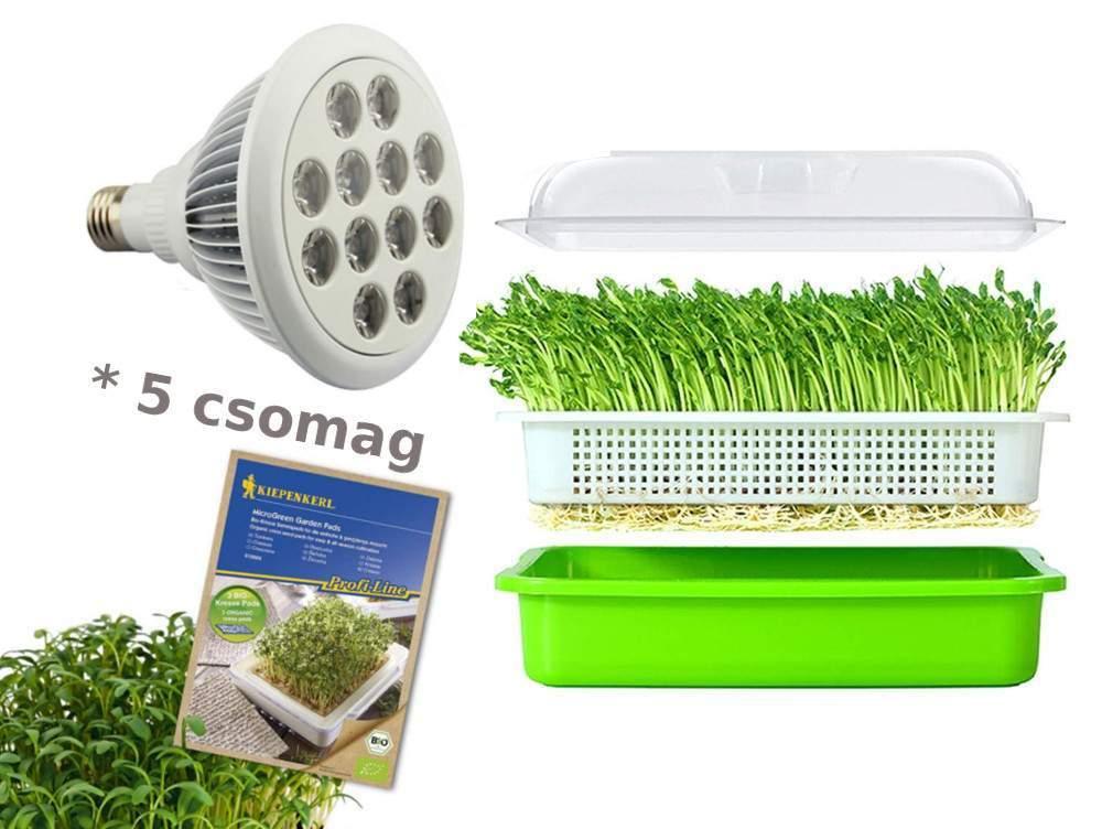 Mikrozöld termesztő szett