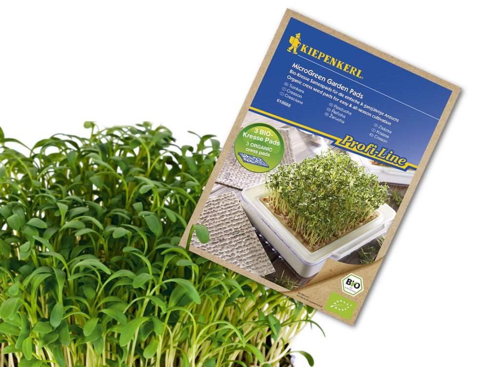 Mikrozöld termesztés