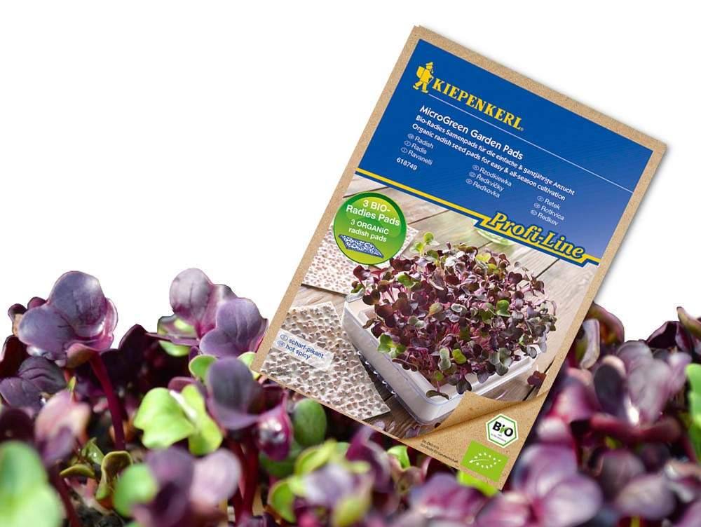 Kiepenkerl bio magpárnák mikrozöldség termesztéshez – Lila Retek