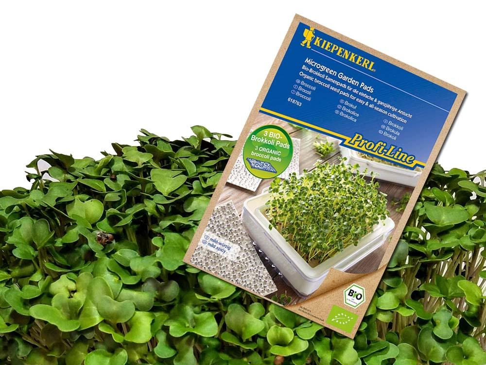 Kiepenkerl bio magpárnák (3 db.) mikrozöldség termesztéshez – Brokkoli