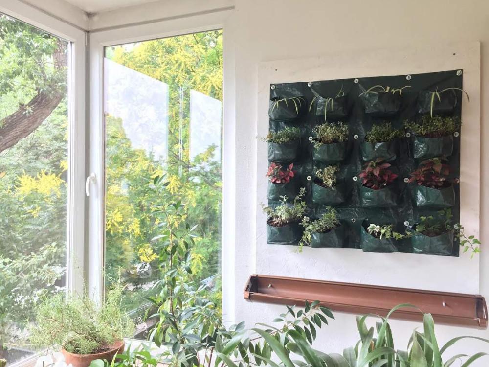 Függőleges kert avagy zöldfal