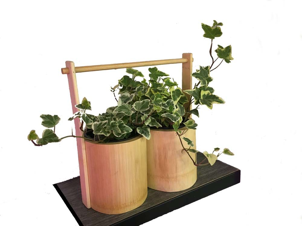 két részes bambusz növénytartó