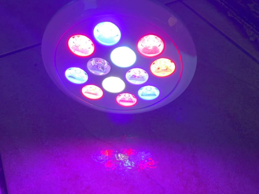 Teljes spektrumú növénynevelő LED izzó (24W), E27