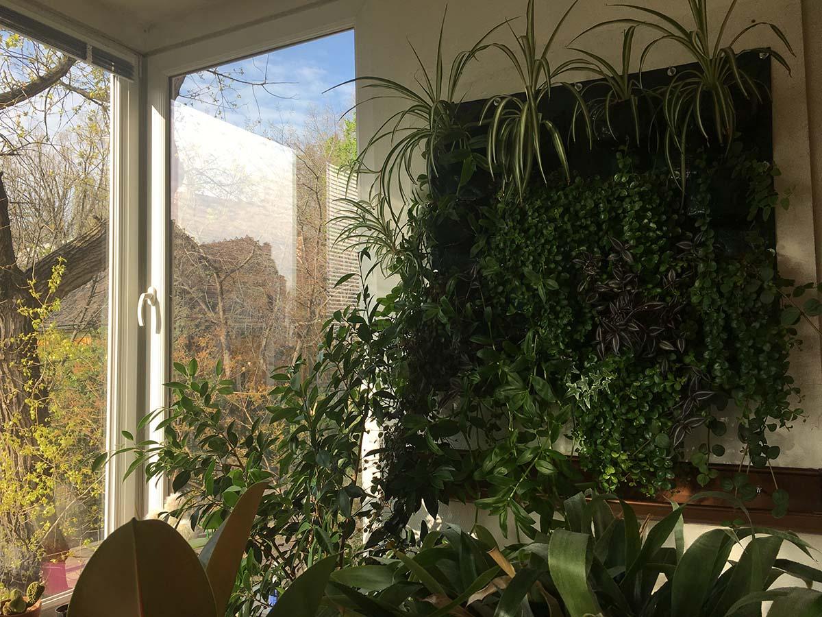 növényes zsebek
