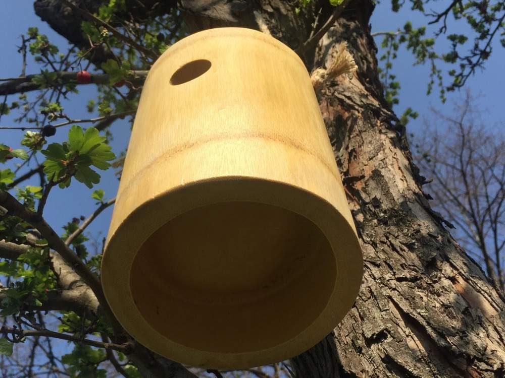 Függeszthető bambusz rovarház, vagy madárodú