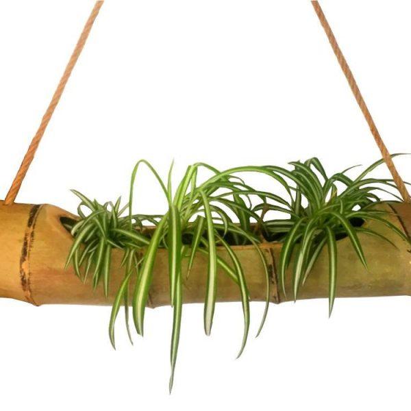 Függeszthető bambusz virágtartó