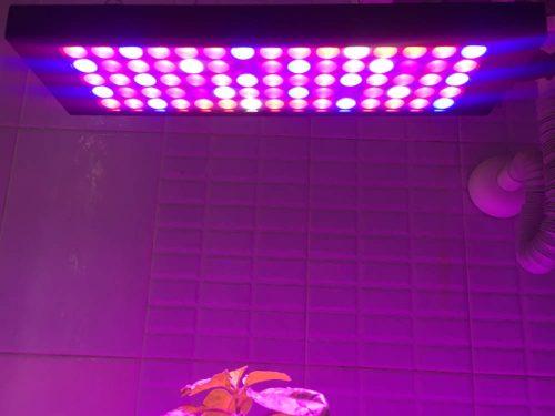 Növénynevelő LED lámpák & fényvisszaverők