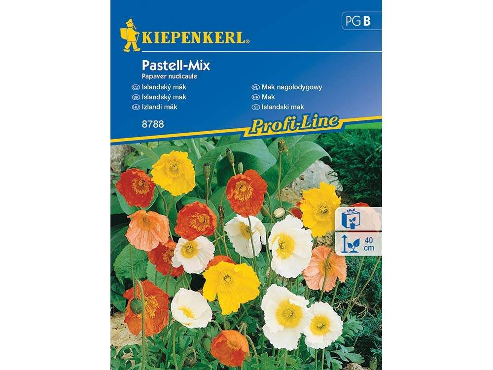 Izlandi mák Pastell-Mix