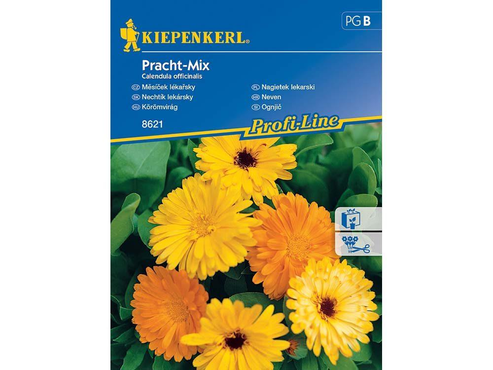 körömvirág Pracht-Mix