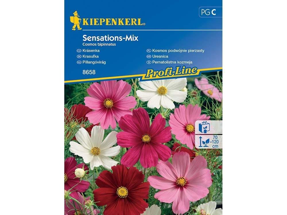 Pillangóvirág Sensations-Mix