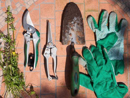 Kerti szerszámok, metszőeszközök