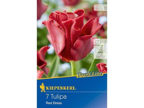 Kiepenkerl Profil-Line Red Dress