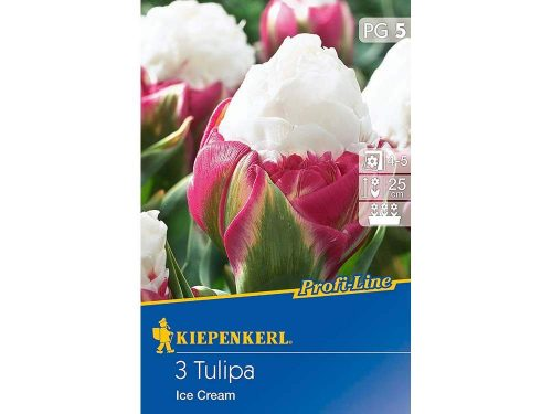 Tulipán Ice Cream